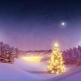 Fototapety Beleuchteter Christsbaum Im Wald