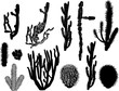 black cactus collection isolated on white
