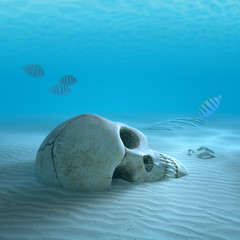 Skull on sandy ocean bottom with small fish cleaning some bones
