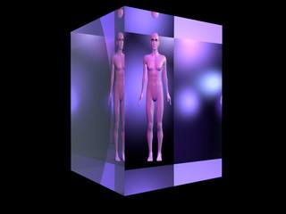 donna nuda in cubo colorato