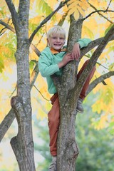Happy cute teenager boy sitting on a branch of tree