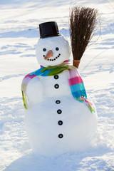 Winter, snow, snowman - winter joy