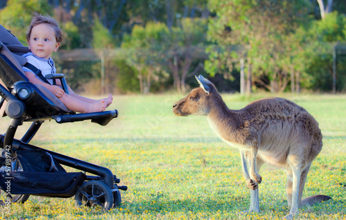 Un bimbo e il suo amico canguro