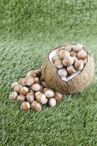Coco with raw hazelnuts