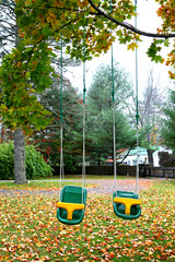 Two swings hanging from tree