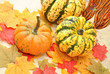 Colorful Decorative Fall Pumpkins