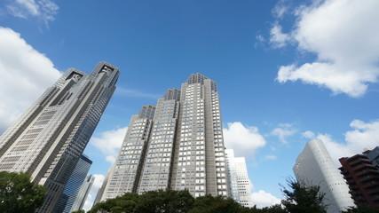 新宿中央公園から東京都庁を見上げる (微速度撮影)