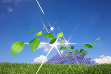 太陽光発電と舞い散る葉っぱ