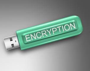 Encryption concept.