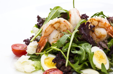 salad greens and shrimp on a white background in the restaurant