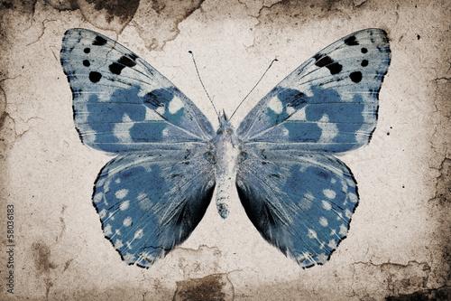 Grunge background - 58036183