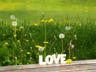 Wort Love in Buchstaben 9