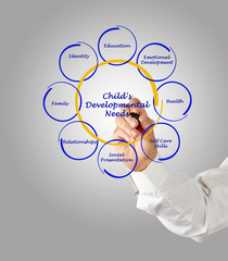 Child's Developmental Needs