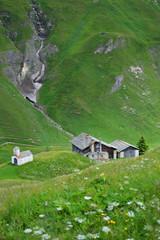 Bergsommer in den Alpen