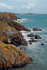 côte sauvage, l'Île d'Yeu