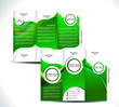 Green Tri Fold Brochure Design
