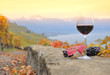 Wine and grapes. Terrace vineyards in Lavaux region, Switzerland