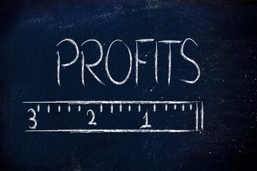 measure your profits