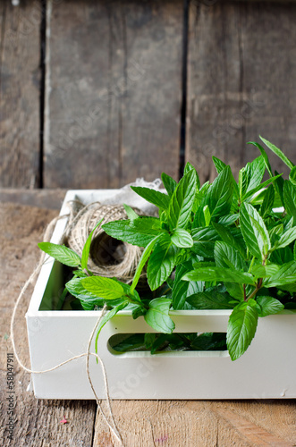 Fresh mint on a wooden background