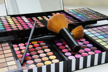 Professional make-up palette and brushes