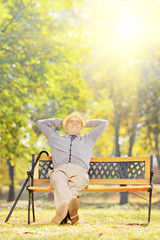 Relaxed senior gentleman sitting on bench in a park