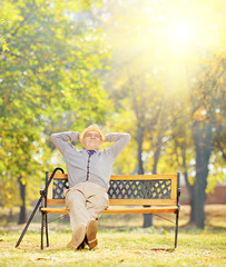 Relaxed senior gentleman sitting on bench in park on a sunny day