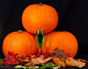 A trio of pumpkins against a black background