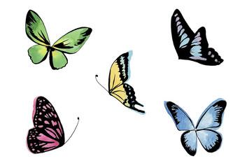 蝶 イラストセット