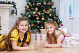 Two little girls  near the Christmas tree