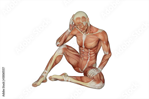 Muscular male with visible muscles - clipping path
