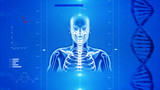 X-Ray of Human skeleton on high tech background