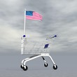 American shopping - 3D render