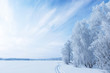 Winter Landscape - 58063366