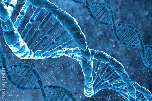 The DNA molecule - 58063335