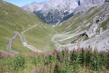 Stelvio National Park (Nationalpark Stilfser Joch, Trentino)