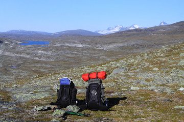 Abenteuer Wildnis  - Schwedisch Lappland
