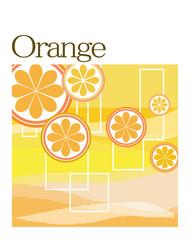オレンジ2013-1107