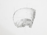 Detail of parietal bones pencil drawing on white paper