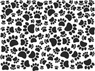 paw pattern