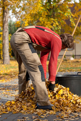 Man filling the bucket with leaves