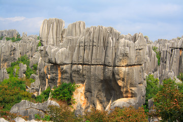 Shi Lin Stone forest national. Yunnan. China.