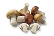 Whole and half Russula mushrooms