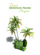 Aerial view of elegant green luggage by palm trees