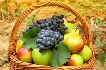 Wicker basket filled with autumn fruits, detail