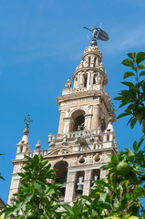 Giralda tower at Seville cathedral