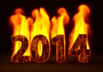 fire,2014