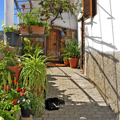 street of Fataga, Gran Canaria, Spain