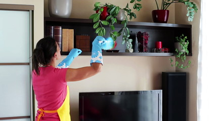 Young woman dusting tv