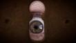 Old man eyes inspecting macro keyhole