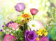 Beautiful flowers on bright background